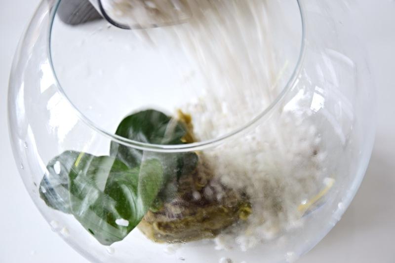 male-akvarium-pro-rybicky-rybka-beta-bojovnice-4