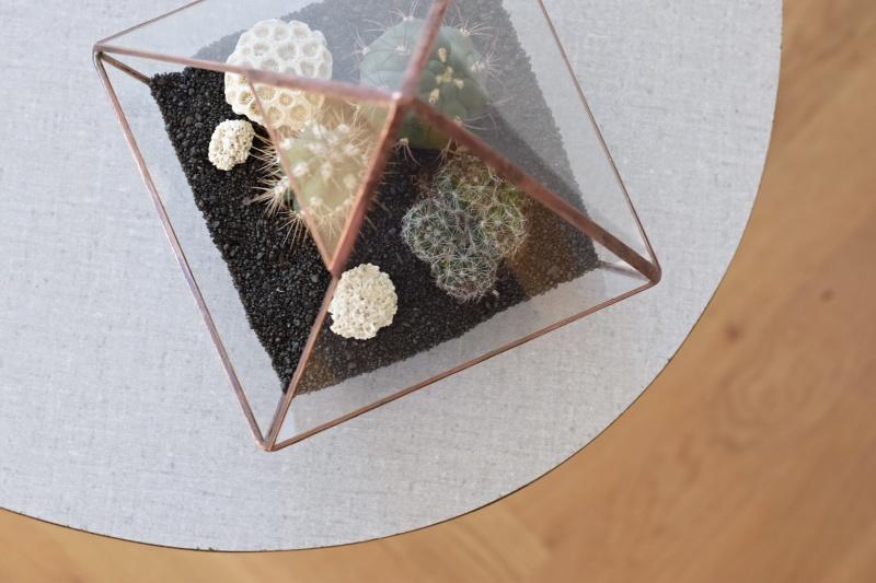 Florária se sukulenty a kaktusy